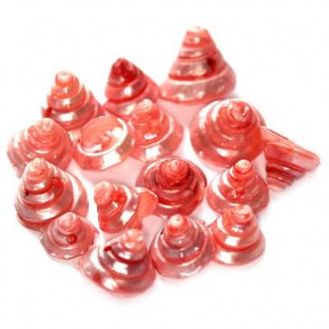 školjke spiralne, rose, 1-2 cm, 50 gr