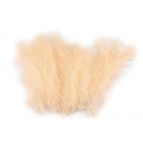 perje 10-17 cm, barva lososa, 1 kos