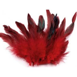 perje 15 cm, t. rdeče b., 1 kos