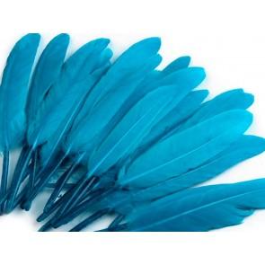 perje 9 - 14 cm, turkizne barve, 1 kos