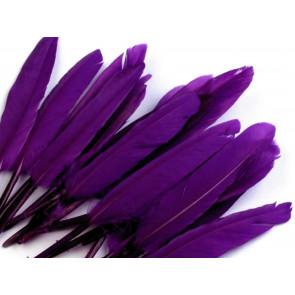 perje 9 - 14 cm, vijolično, 1 kos