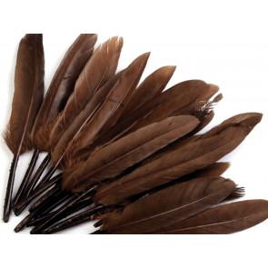 perje 9 - 14 cm, rjavo, 1 kos