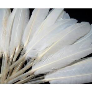perje 9 - 14 cm, belo, 1 kos