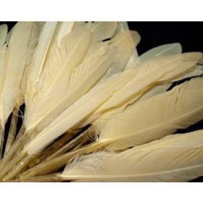 perje 9 - 14 cm, barva vanilije, 1 kos