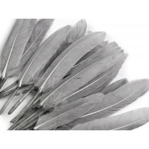 perje 9 - 14 cm, sivo, 1 kos