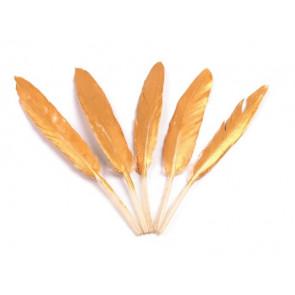 perje 10,5 - 14,5 cm, zlate b., 1 kos