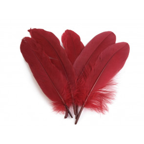 perje 16 - 21 cm, temno rdeče, 1 kos