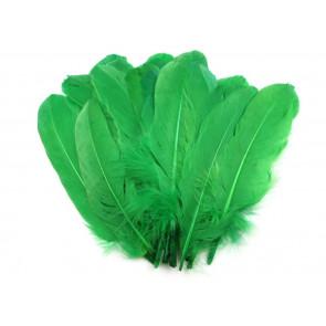 perje 16 - 21 cm, zeleno, 1 kos