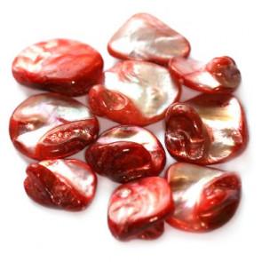 školjke, 1 - 2,5 cm, rdeče, 50 gr