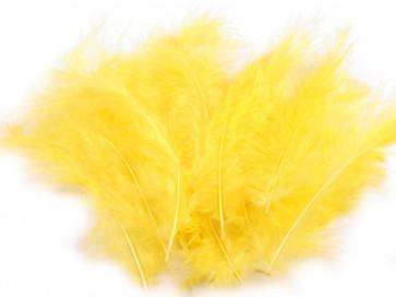 perje 10-17 cm, rumeno, 1 kos