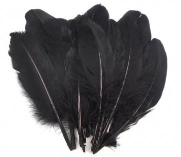 perje 16 - 21 cm, črno, 1 kos