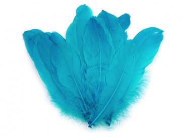 perje 16 - 21 cm, turkizne barve, 1 kos