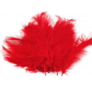 perje 10-17 cm, svetlo rdeče barve, 1 kos