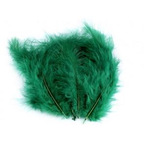 perje 9-18 cm, barva zelena, 1 kos