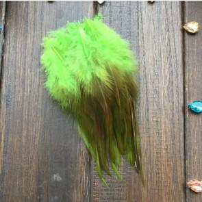 perje 15 cm, s. zelene b., 1 kos