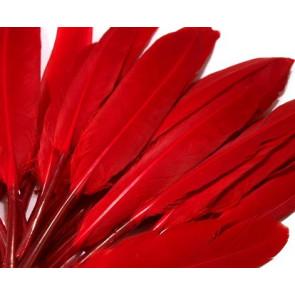 perje 9 - 14 cm, rdeče, 1 kos