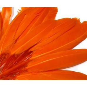 perje 9 - 14 cm, oranžno, 1 kos