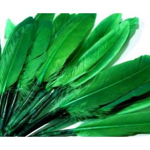 perje 9 - 14 cm, zeleno, 1 kos