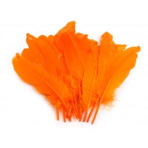 perje 16 - 21 cm, oranžno, 1 kos
