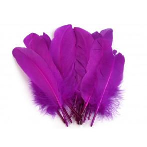 perje 16 - 21 cm, vijola, 1 kos
