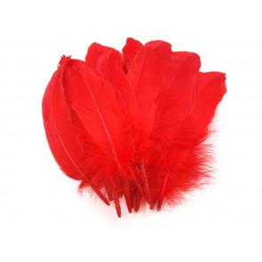 perje 16 - 21 cm, svetlo rdeče, 1 kos
