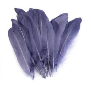 perje 16 - 21 cm, temno modre barve, 1 kos