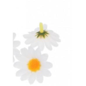 cvet marjetice 20 mm, bel, 1 kos