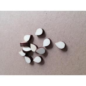lesena kapljica - kapljica/solza 10 mm, naravna, 1 kos